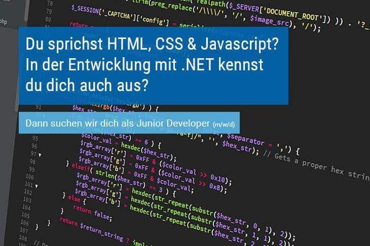 Junior Developer bei der IMS GmbH